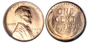 1909SVDB