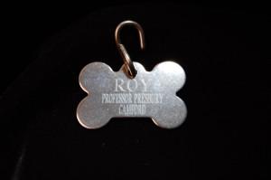 Dog tag of Roy, Presbury's faithful wolf-hound ~ WTB CREE Evidence Box
